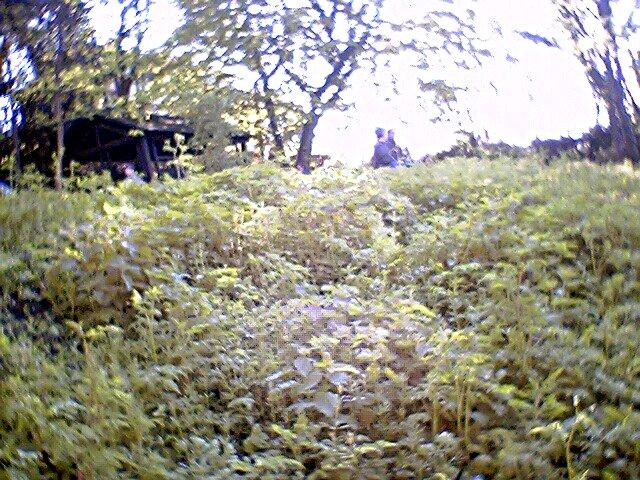 Le Jardin Sauvage Saint Vincent Laurence Et Sebastien Dubourg